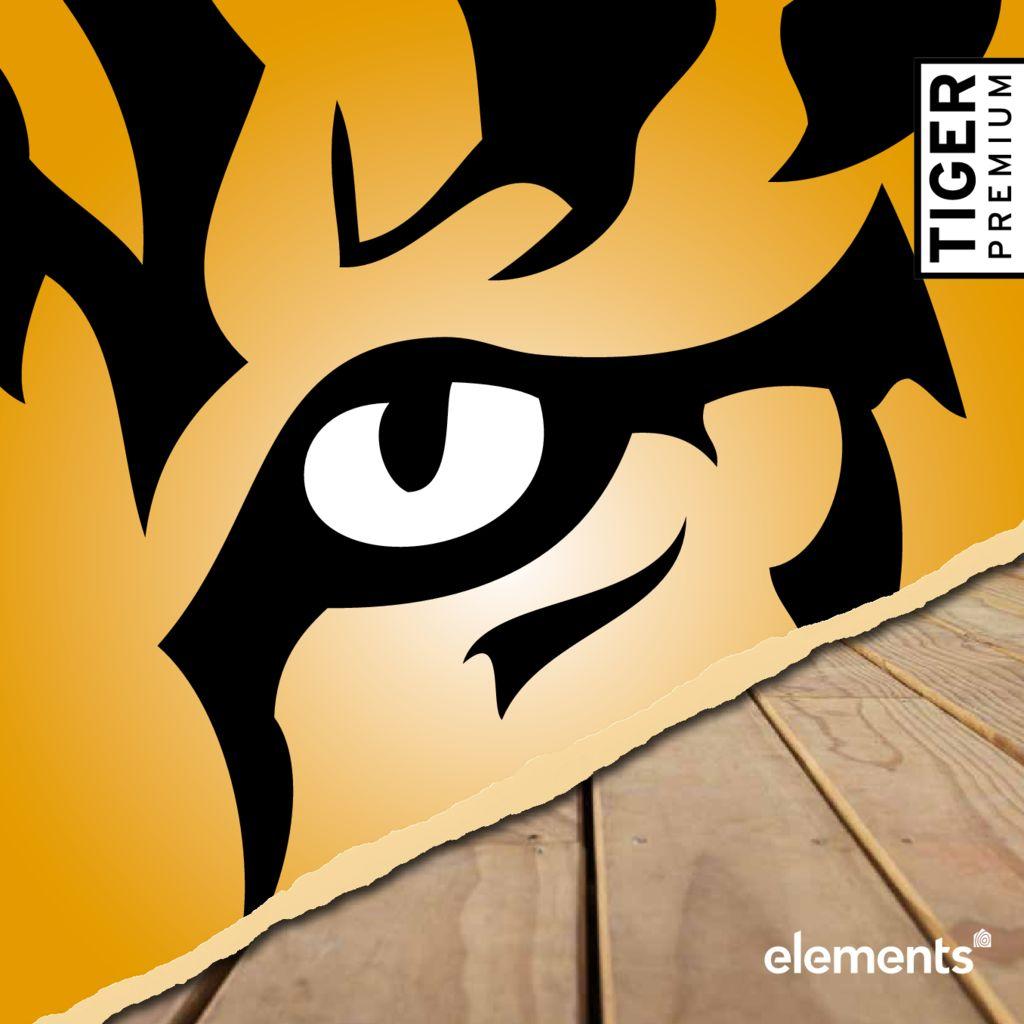 thumbnail of TP-Elements_Broschuere